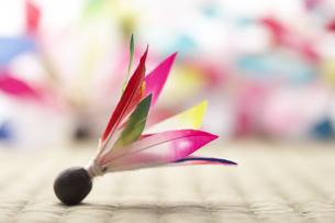 羽子板の羽根の素材 [FYI00960786]