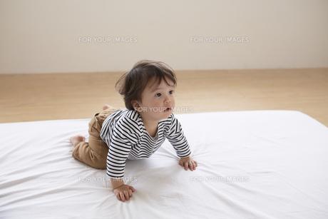 布団から立ち上がろうとしている男の子の素材 [FYI00962581]