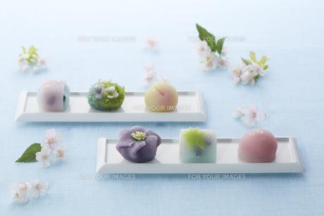 パステルカラーの和菓子とサクラの素材 [FYI00962603]