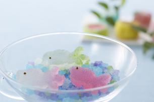 金魚のお菓子と金平糖の素材 [FYI00962684]