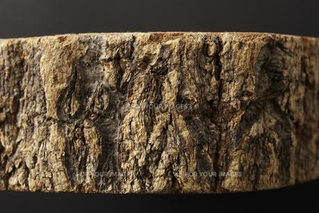 木の表皮の素材 [FYI00962918]