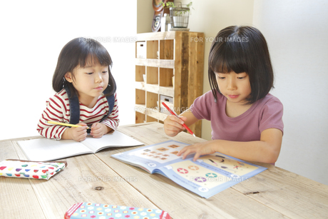 勉強をする2人の女の子の素材 [FYI00968586]