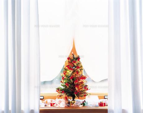 クリスマスツリーの素材 [FYI00969293]