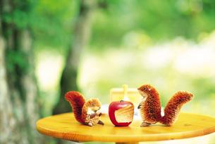 庭のテーブルに置いたリスの置物の素材 [FYI00969469]