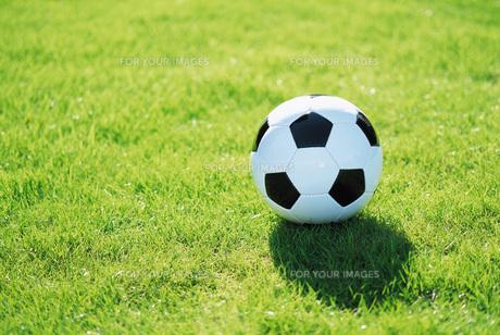 芝生の上のサッカーボールの素材 [FYI00969504]