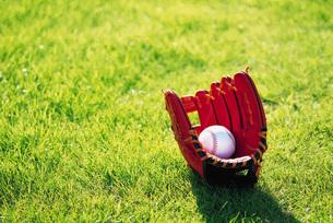 野球グローブとボールの素材 [FYI00969519]