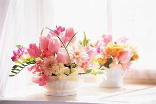 窓辺の花の素材 [FYI00969582]