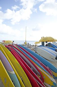 ワイキキビーチのサーフボードの素材 [FYI00969728]