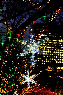 クリスマスイルミネーションの素材 [FYI00970401]