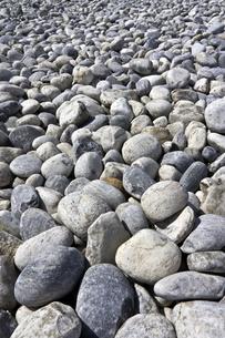 小石の浜の素材 [FYI00970599]
