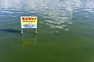 池の注意喚起の看板の素材 [FYI00971528]