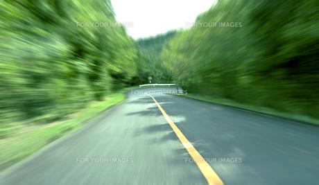 緑の山間道路ドライブの素材 [FYI00971840]