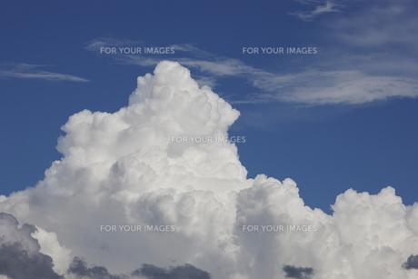 入道雲 積乱雲の素材 [FYI00973976]