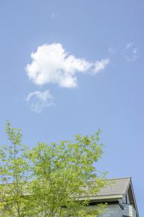 青空と家の素材 [FYI00975068]
