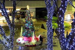 西新宿2丁目のクリスマスツリーとイルミネーションの素材 [FYI00979150]
