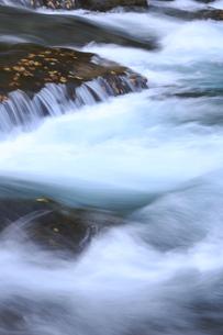 秋の奥入瀬渓流の素材 [FYI00980008]