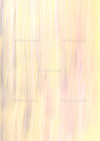 流し撮りした林の素材 [FYI00981116]