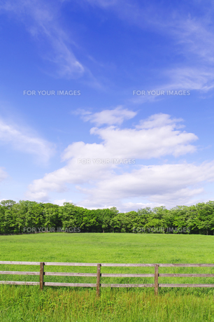 牧柵のある草原の風景の素材 [FYI00981588]