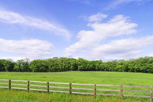 牧柵のある草原の風景の素材 [FYI00981660]
