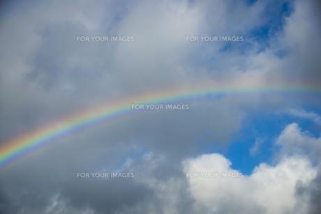 虹の素材 [FYI00984978]