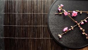 黒いおぼんの上の桃の花の写真素材 [FYI00986499]