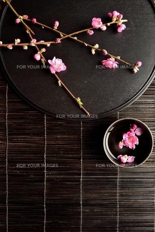 黒いおぼんの上の桃の花と小鉢の写真素材 [FYI00986502]