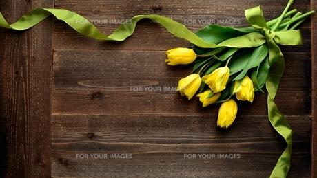 黄色いチューリップとリボン 黒木材背景の写真素材 [FYI00986503]