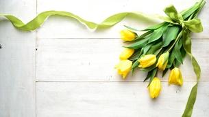 黄色いチューリップとリボン 白木材背景の写真素材 [FYI00986505]