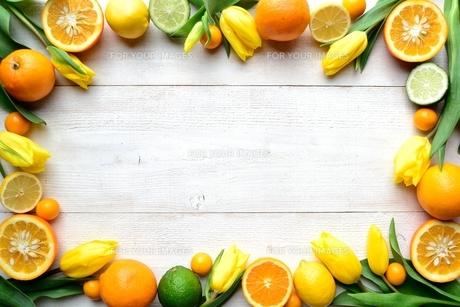 黄色いチューリップと柑橘系フルーツ フレーム 白木材背景の写真素材 [FYI00986508]
