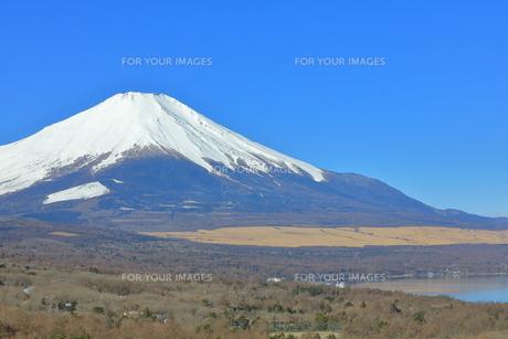 富士山の写真素材 [FYI00986759]