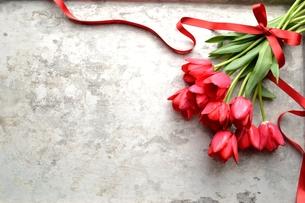 赤いチューリップの花束 銀色背景の写真素材 [FYI00986898]