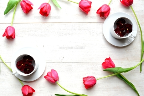赤いチューリップとパンジーを浮かべたペアの白いコーヒーカップ 白木材背景の写真素材 [FYI00986907]