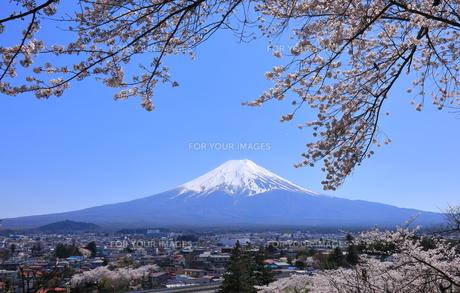 富士山の写真素材 [FYI00987390]