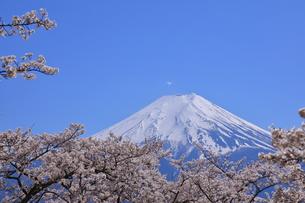 富士山の写真素材 [FYI00987399]