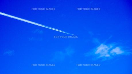 飛行機雲 空の写真素材 [FYI00987556]