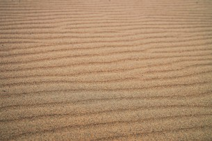 鳥取砂丘の写真素材 [FYI00987743]