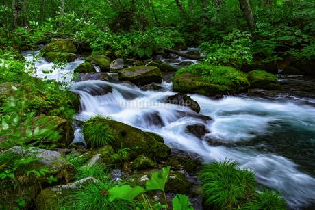 渓流の景色の写真素材 [FYI00987820]