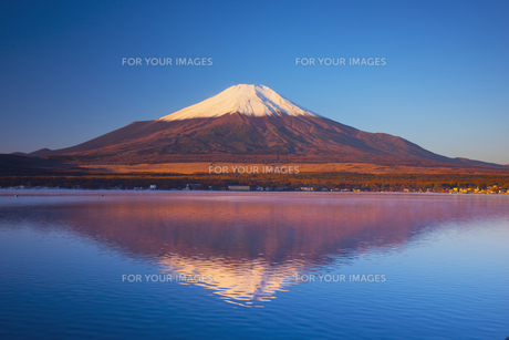 朝の富士山と山中湖の素材 [FYI00988810]