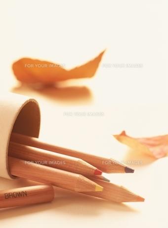 枯葉と色鉛筆の素材 [FYI00991759]