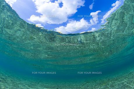 澄んだ海中と青い空の素材 [FYI00992212]