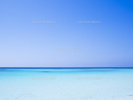 雲のない青い空と透明な海の素材 [FYI00992982]