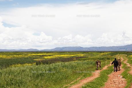 ペルーの大地と空の素材 [FYI00993837]