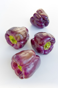 紫色のピーマンの素材 [FYI00996118]