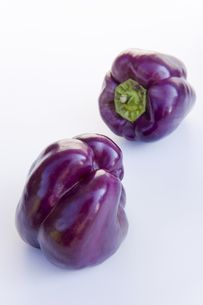 紫色のピーマンの素材 [FYI00996222]