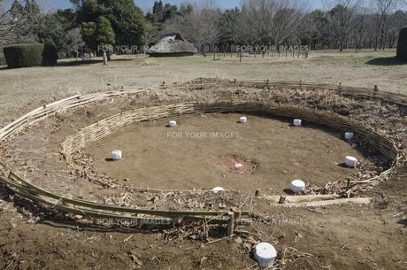 加曽利貝塚 竪穴式住居の柱位置などを表示の素材 [FYI00998031]