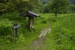 県天然記念物の居谷里湿原入口の素材 [FYI01000098]