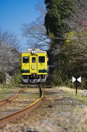 いすみ鉄道のムーミン電車の素材 [FYI01001035]