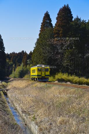 いすみ鉄道のムーミン電車の素材 [FYI01001081]