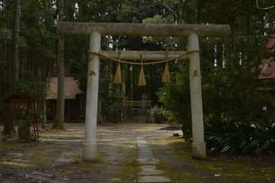 国吉神社の鳥居の素材 [FYI01001139]