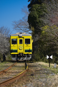 いすみ鉄道のムーミン電車の素材 [FYI01001241]